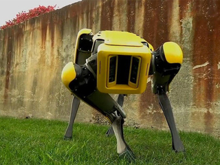 Робопса Boston Dynamics уволили из нью-йоркской полиции